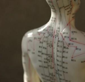 acupuncture-mannequin
