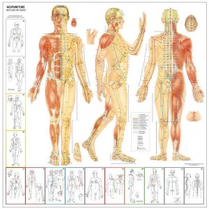 chinese_acupuncture-points